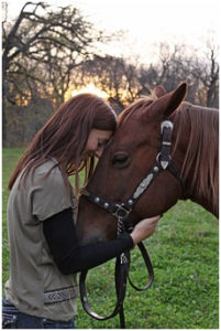 horse with equestrian woman