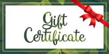 Gift Certificate for Natural Therapy Wellness Center
