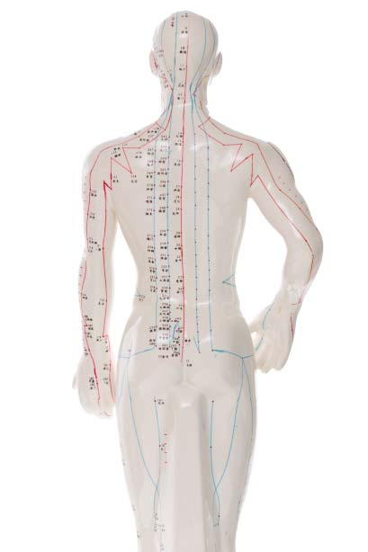 acupuncture pressure points Natural Therapy Wellness Center, McHenry IL