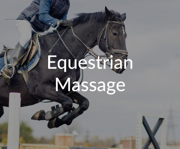 equestrian massage at Natural Therapy Wellness Center in McHenry IL